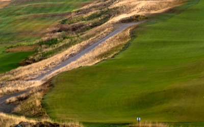 The Ultimate Spectator's Guide to the 2015 US Open at Chambers Bay